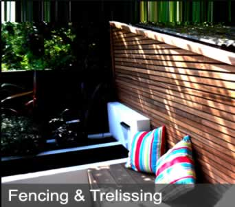 image of fencing and trelissing