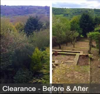 clearance services image